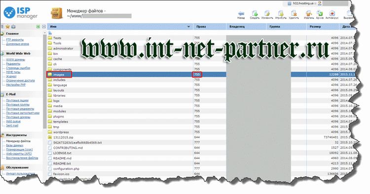 Как выставить права доступа 777 на файл или папку Интернет-проекта?