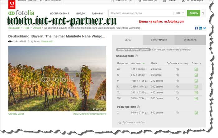 Где брать уникальные картинки для блога? Обзор лучших фотостоков