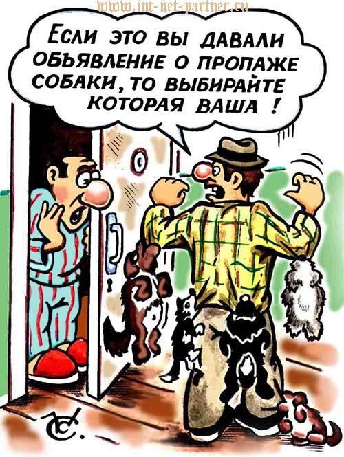 """Карикатура """"Забирай свою собаку"""""""